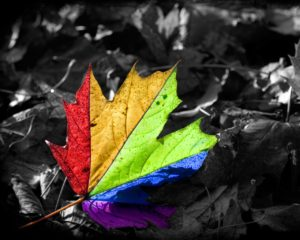-downloadfiles-wallpapers-1280_1024-colors_make_a_difference_wallpaper_miscellaneous_other_wallpaper_1280_1024_3295 (1)