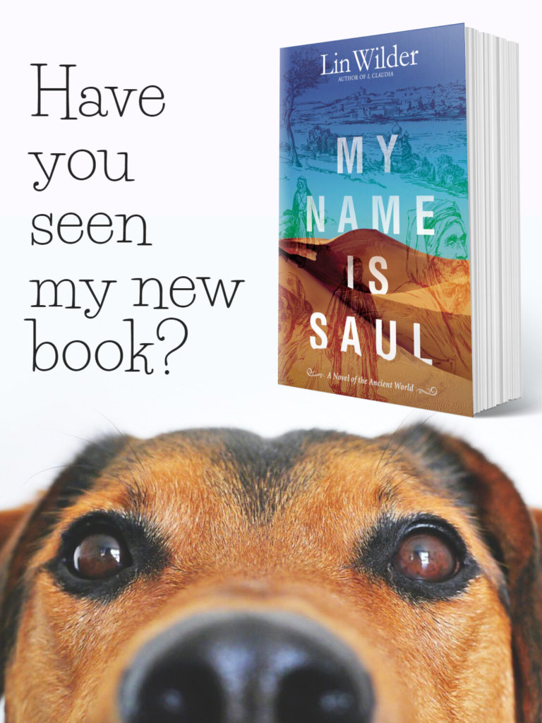 My Name is Saul is Done!
